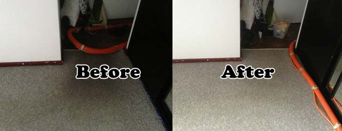 Carpet Cleaning  Naval Base