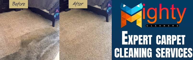 Expert Carpet Cleaning Adelaide